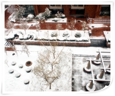snow-in-beijing-by-donghae